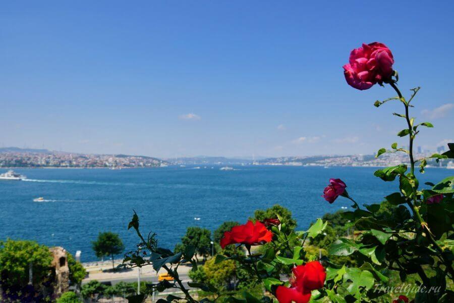 Пейзаж с морем