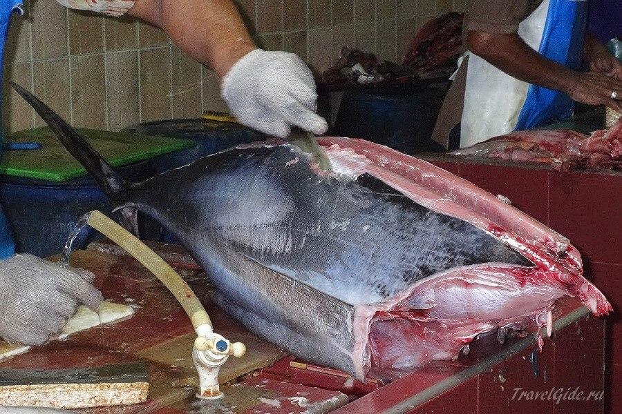 Разделка тунца