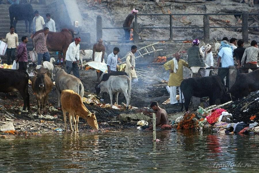 Погребальная церемония на реке Ганг