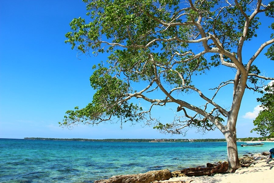 Виды пляжа