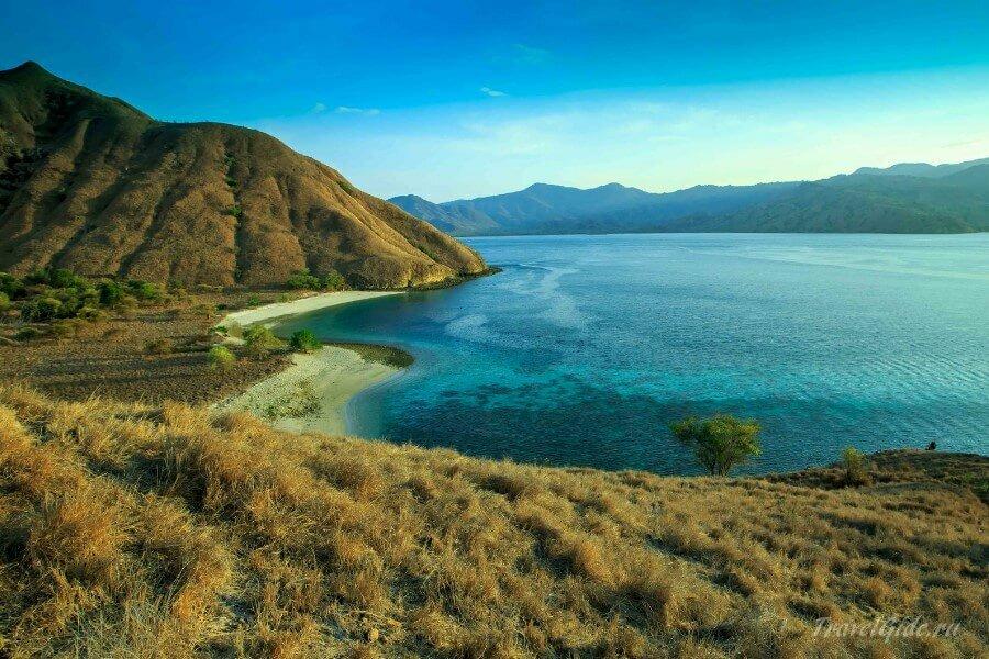 Остров Комодо в Индонезии © Travelgide.ru
