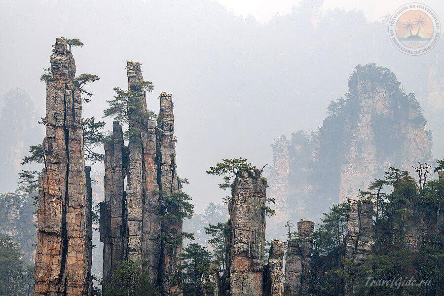 чудо света - Stone Forest